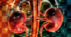 National-Kidney-Day-BL